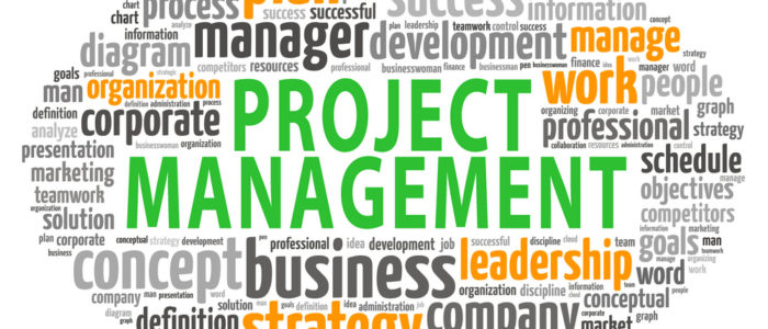 Project management structure processes plans cost teams tasks