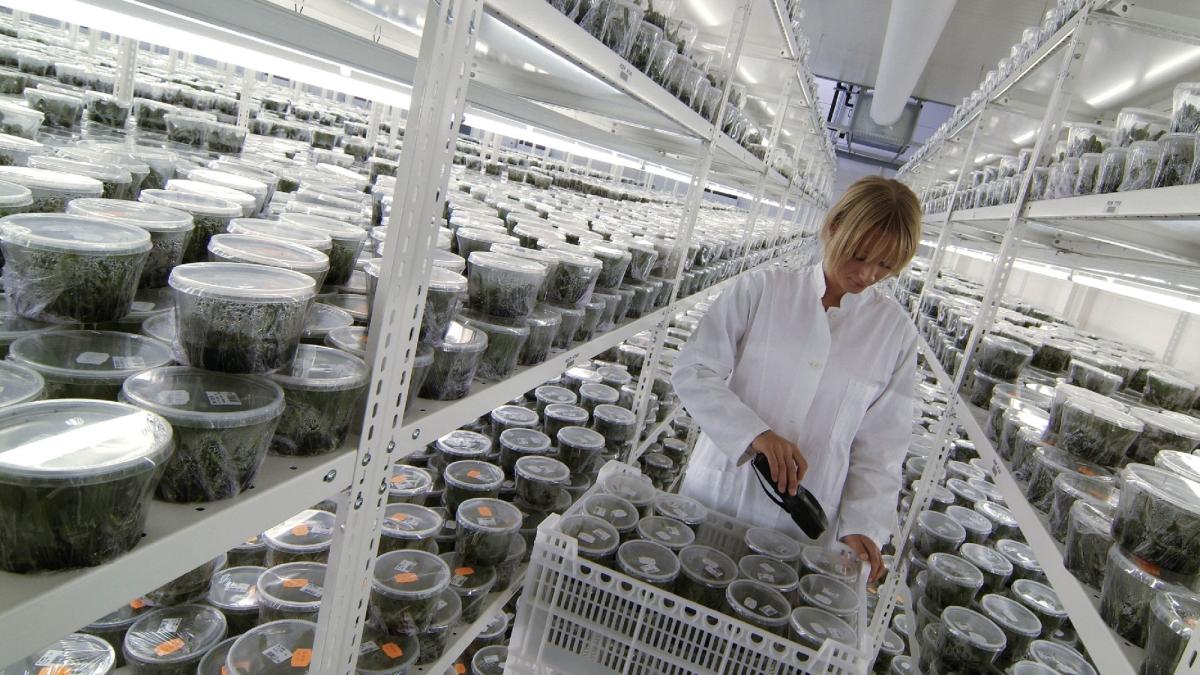Farmacija in medicina - barcode nalepke